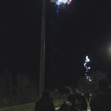 Fireworks lit up the sky.